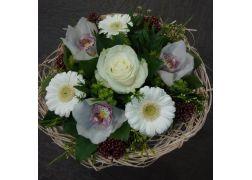 Bouquet cisal blanc