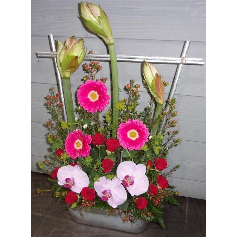 livraison de fleurs reims composition d 39 amaryllis. Black Bedroom Furniture Sets. Home Design Ideas