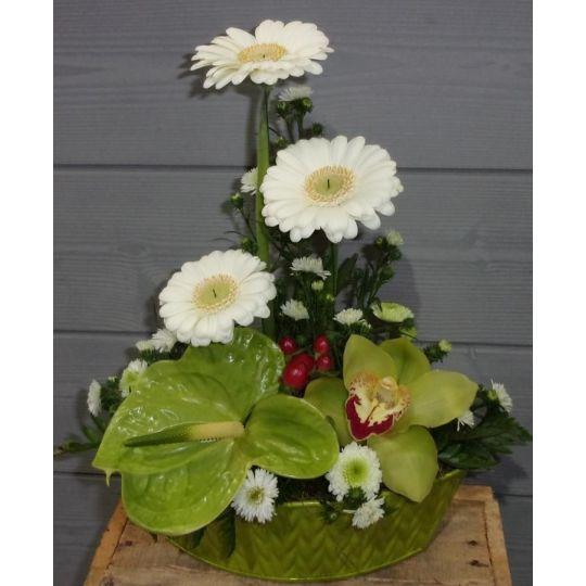 Composition avec une hauteur de germinis avec orchidée et anthurium
