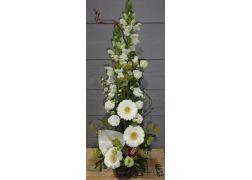 Composition en hauteur avec mufliers,germinis et orchidée