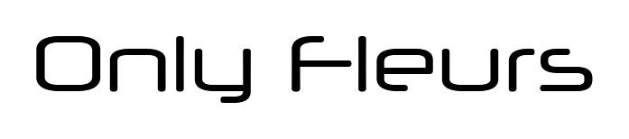 Only Fleurs - Artisan fleuriste à Reims