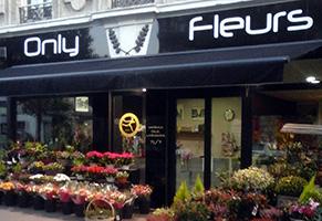 Vente en ligne de fleurs sur Reims et sa périphérie